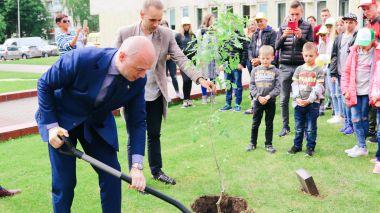 Lygybės medis 2018m.